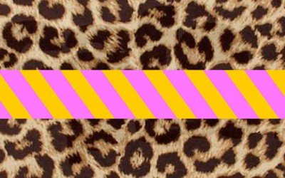 Leopard print and neon stripes